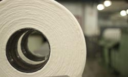 Cotton & Textiles